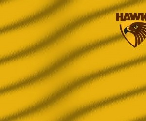 Wallpaper Hone Hawks Giallo wallpaper